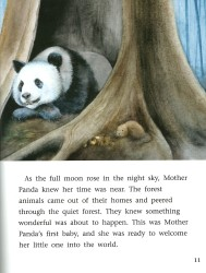 A Baby Panda is Born - Engage