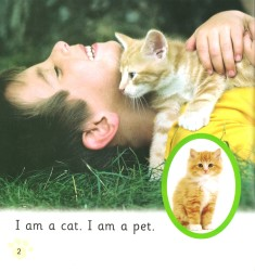 Pet Cat,  Big Cat - Collins Big Cat Phonics